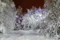 Зима 2018