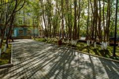 Сквер на ул. Сафонова